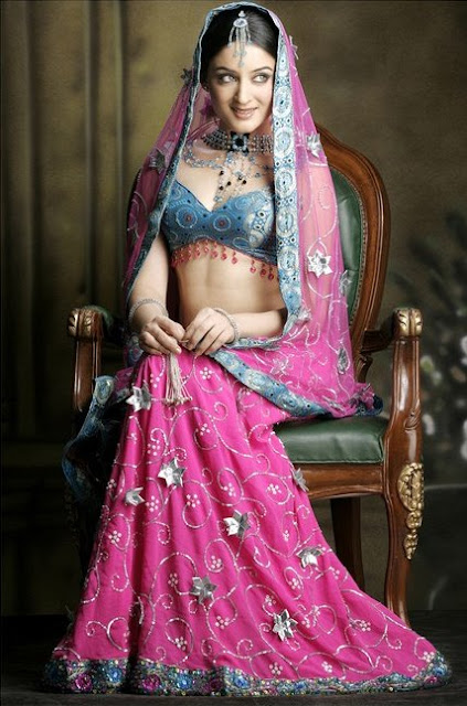 Designer Wedding Saree & Lahenga Picture