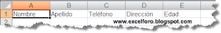 Un FORMULARIO de datos en Excel.