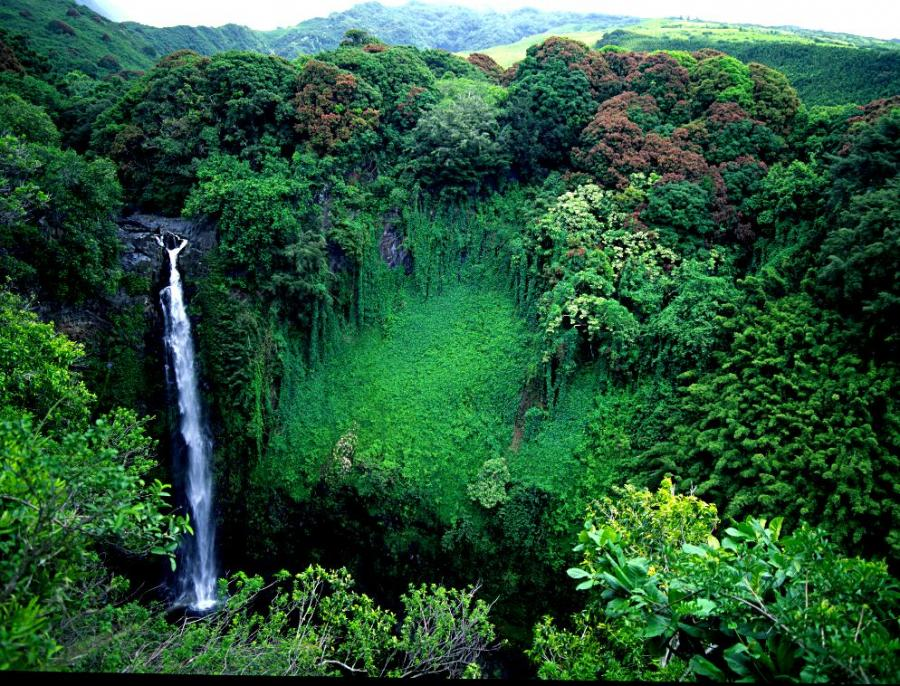 hawaii national park single mature ladies The national park service pacific west region spans 106 degrees around the globe and includes more than 60 national park sites within the eight states of california.