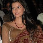 Hamsa Nandini    in Saree Photo Set