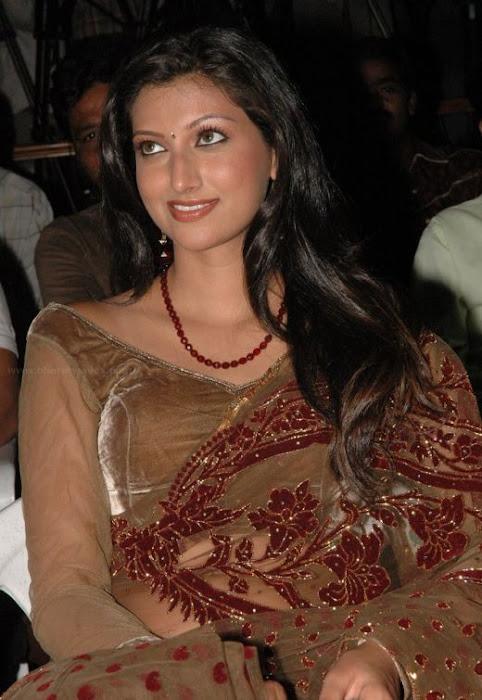 hamsa nandini glamourous in saree