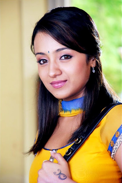 trisha in saree