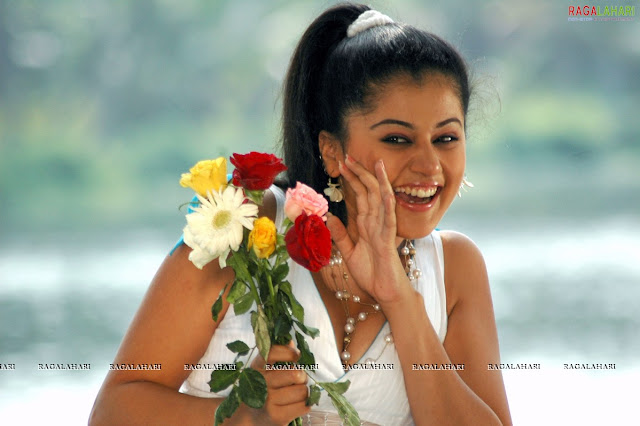 tapsee hot stills
