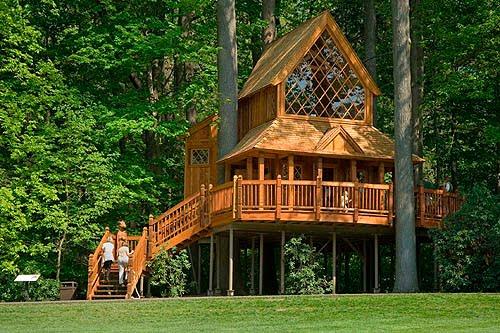Dise o de una casita de madera en un rbol jardinitis - Casitas en el bosque ...