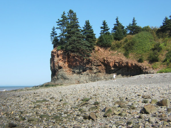 chipman brook, low tide - bay of fundy stop