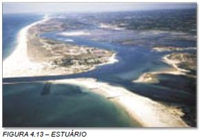 Estuário