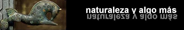 naturaleza y algo más