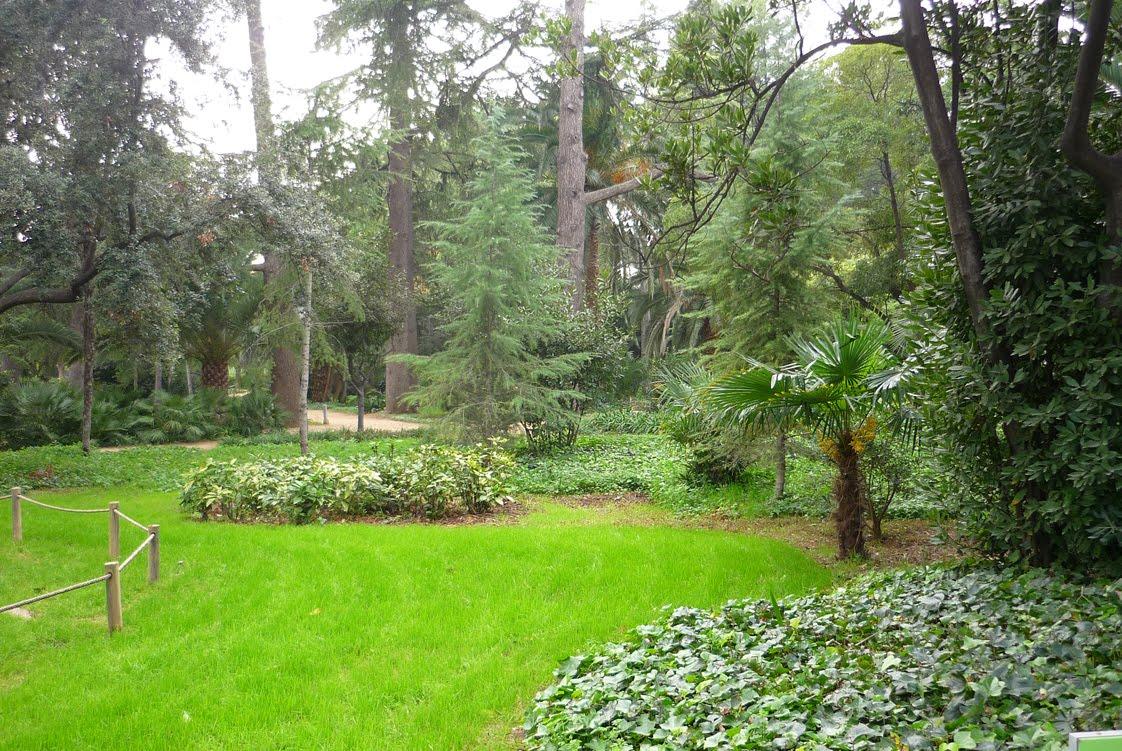 Veo veo jardins del palau de pedralbes 05 - Jardins del palau ...