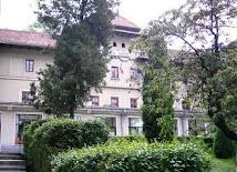 Colegiul Vlaicu Voda