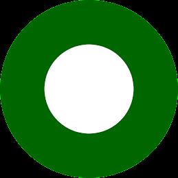 PAKISTAN ARMY ROUNDEL