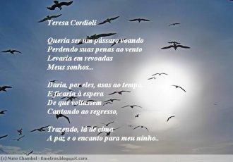 Asas ao Tempo -  Teresa Cordioli