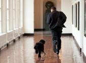 [Obama+running+with+dog]