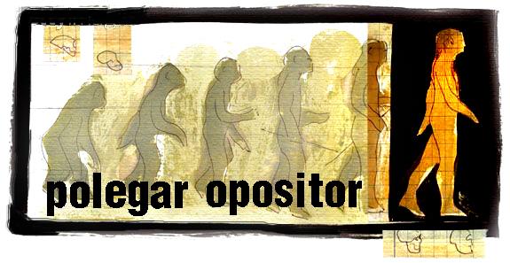 Polegar Opositor