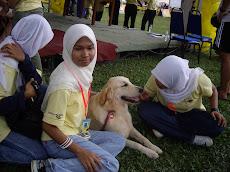 Fenomena & Hukum Memelihara Anjing Dalam Islam (Lengkap dengan Dalilnya)