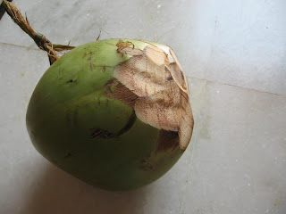 Cocunuts—The Easy Cut