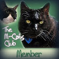 Member of the M-Cats Club