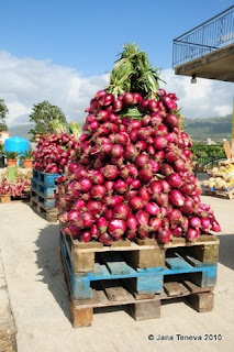 Calabria cipolla rossa
