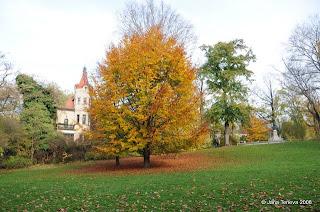 Herbst im englischen Garten Muenchen