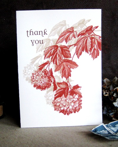 thank you letter. unique thank you card ideas.