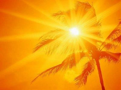 Resultado de imagem para alegria do sol