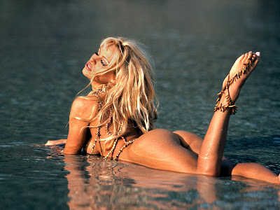 pamela anderson playboy nude naked wallpaper pambition sexy 10 10 Nude Pamela Anderson Playboy Wallpapers [1600x1200]