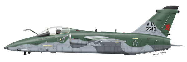 AMX.jpg