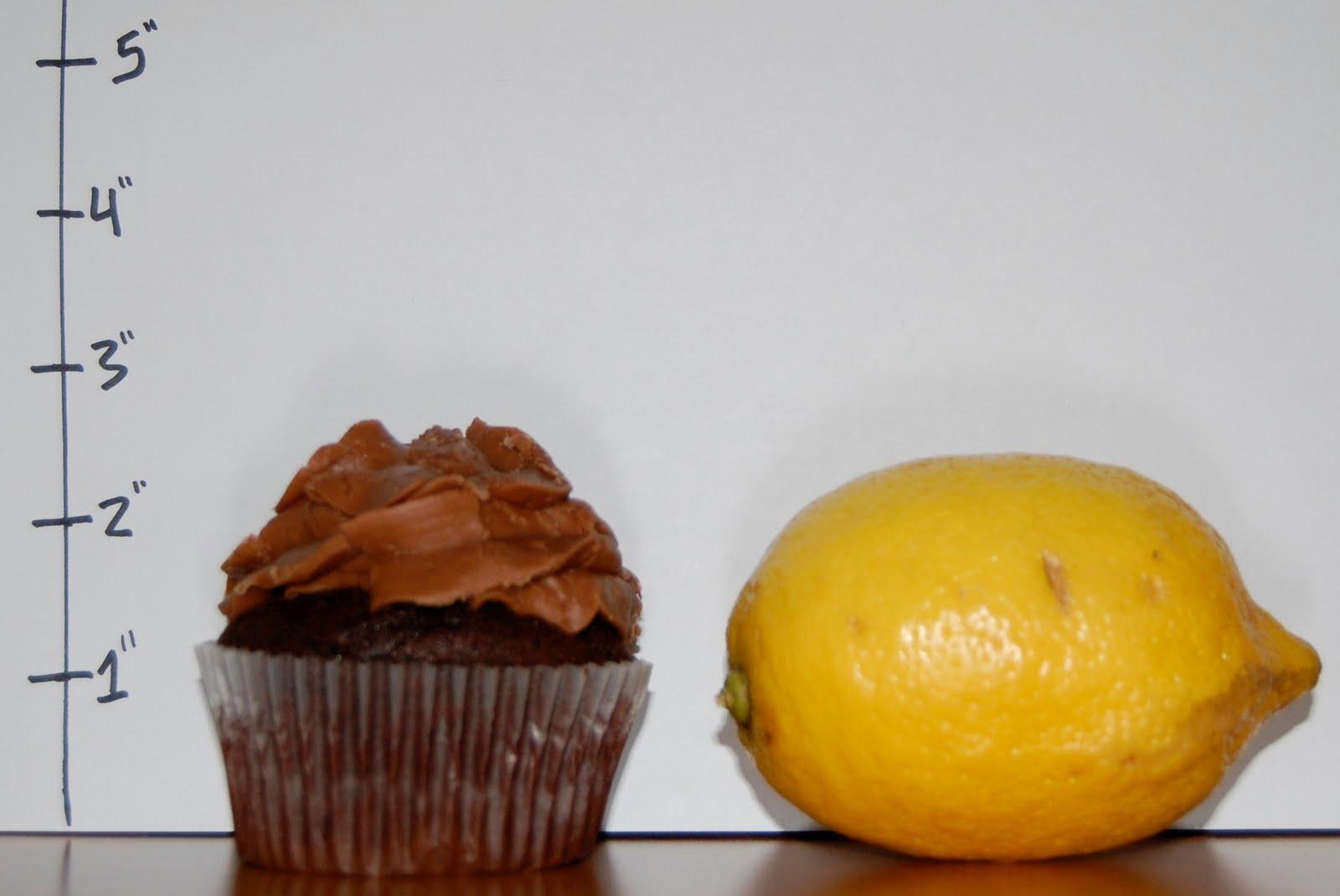 The Cupcake Collection Nashville