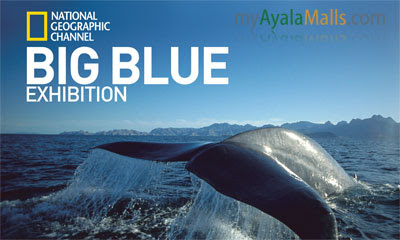 event ayala malls biggest blue exhibit