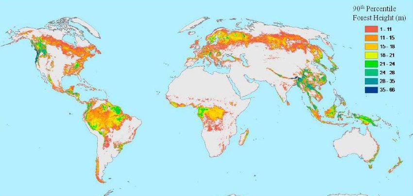 History Of Geology Worldwide Tree Heights Map