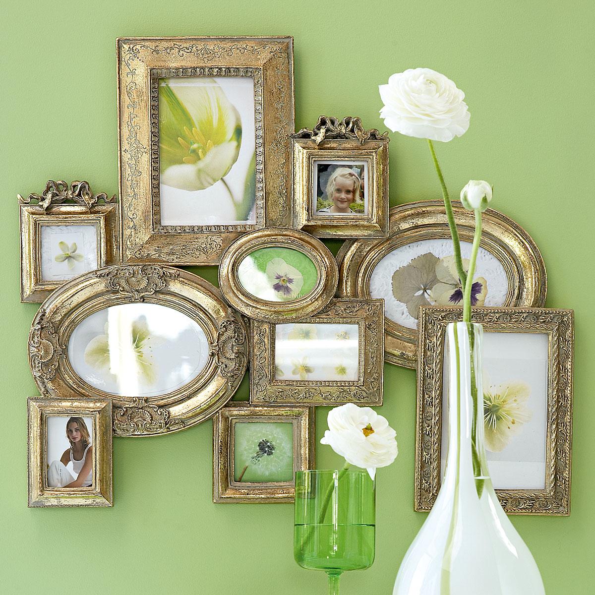 зелёные цветы название и фото и уход за ними