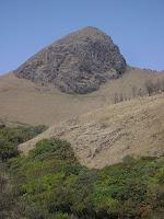 BIODIVERSITY: Nilgiri Biosphere Reserve