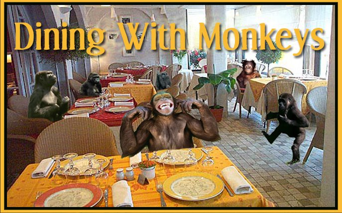 Dining With Monkeys