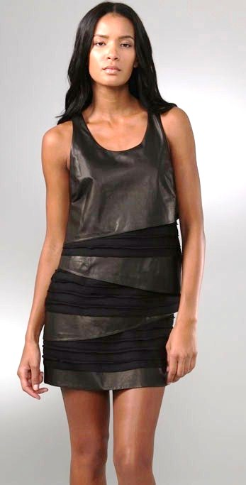 leather den leather dresses and skirts