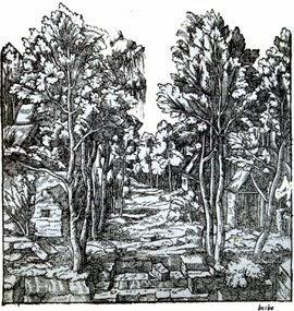 Cena Satírica do Segundo Livro de Perspectiva, 1545
