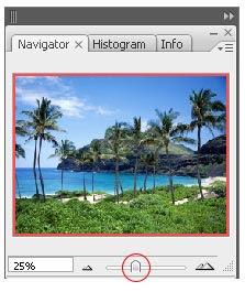 gambar palet navigator photoshop 3