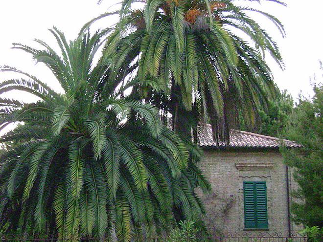 45 / Italy (Abruzzo region)