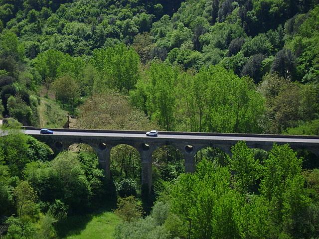 48 /Italy (Maremma region)