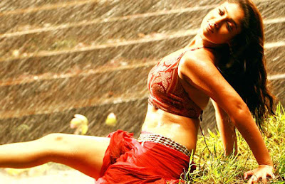 south indian mallu actress nayanthara  bikini and showing cleavage hot sexy image gallery