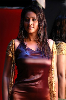 South indian mallu actress sneha exposing hot saree image gallery with wet and showing deep cleavage
