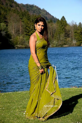 south indian mallu actress nayayanthara hot sexy saree image gallery hot pic