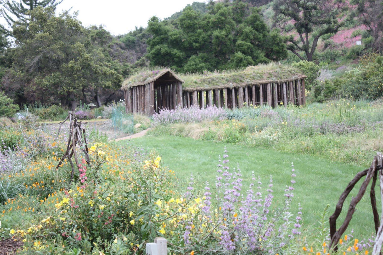the perennial blogger santa barbara botanic garden