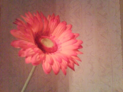 birthday flower