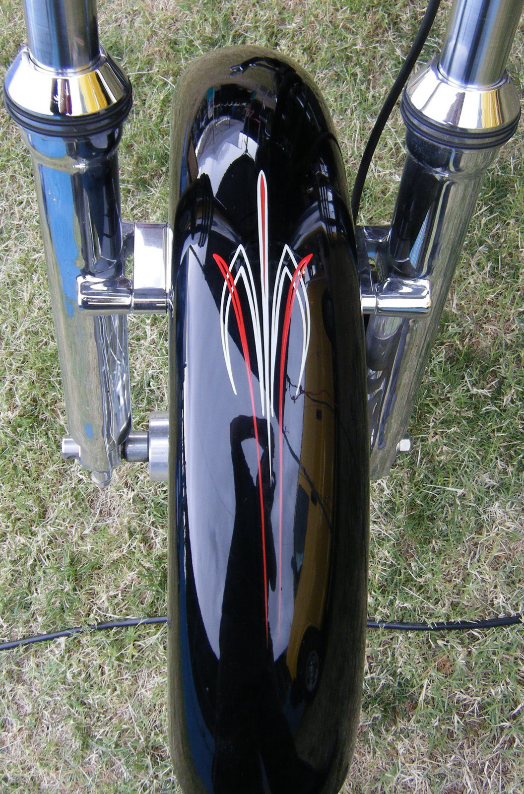[dice+striping+front+fender.jpg+blog]