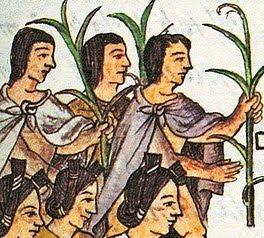 El ma 237 z fue sagrado para los aztecas