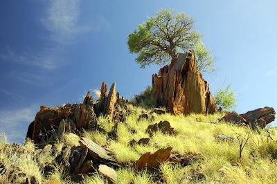Bilder fotos aus namibia afrika kostenlos download