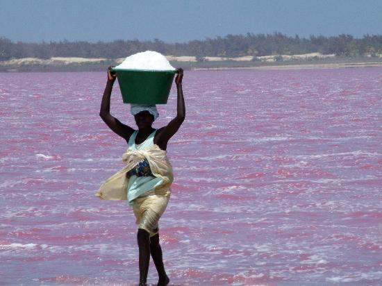 Розовое озеро. Фото