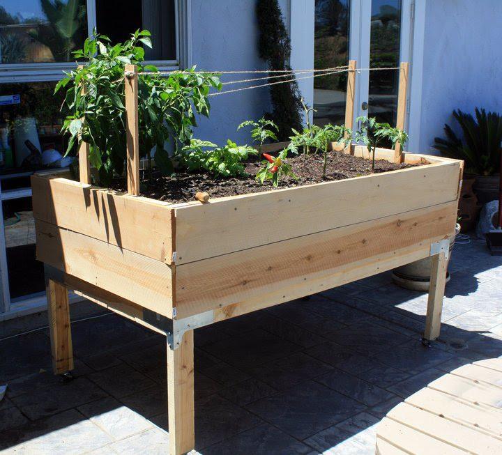 Large Organic Standing Vegetable Planter Box!