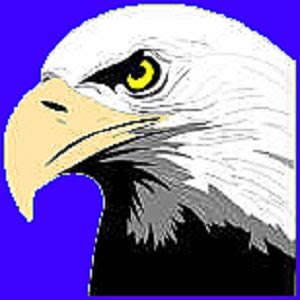 Cellebrity Twist Patriotic Eagle Clipart