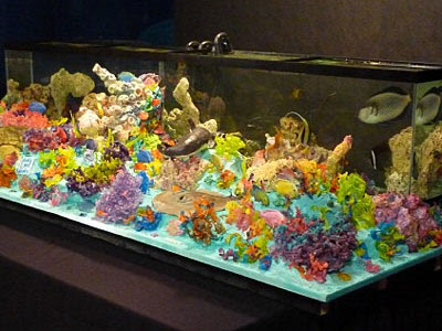 Rewind the cake boss is a great prototyper for Fish tank cake designs