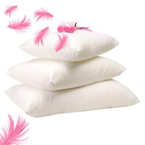 Madame truc oreillers de plumes - Laver des oreillers en plume ...